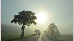Nebel auf der Strasse